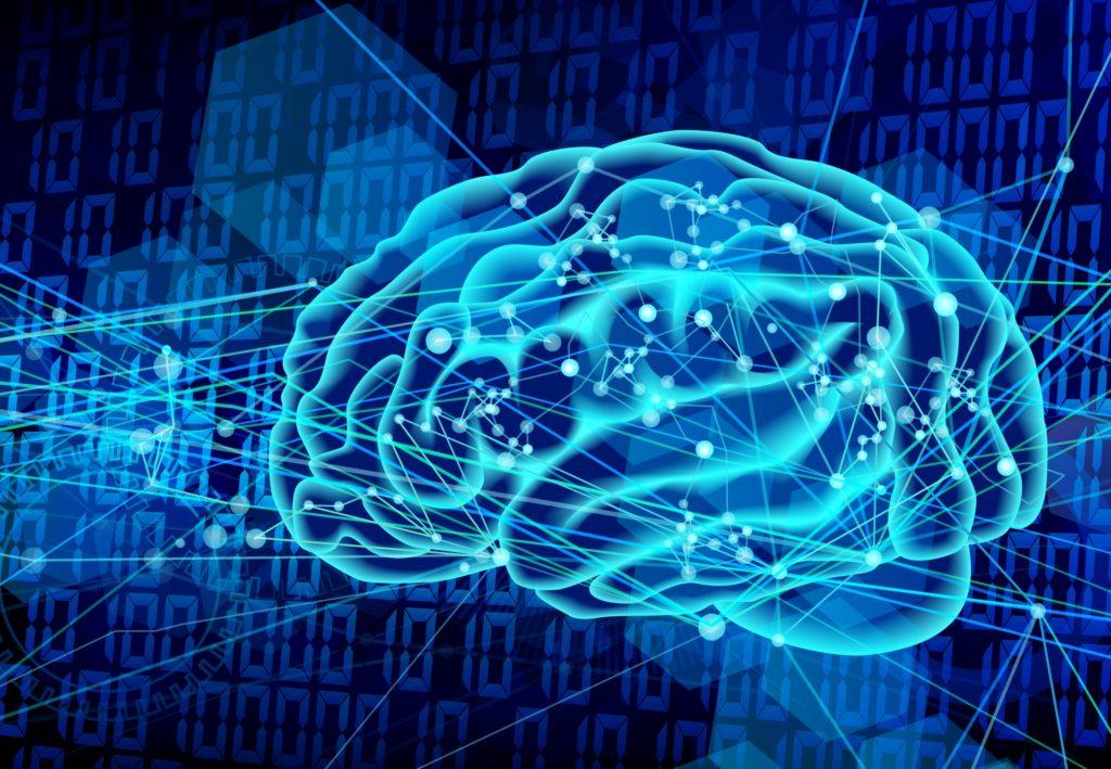 電子的な脳の画像